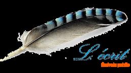 Logo L. écrit, écrivain public